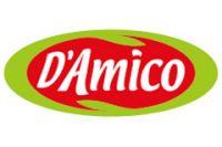 D&D Italia (D'Amico)